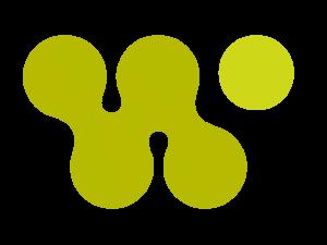 Washington Area Women's Foundation Logo