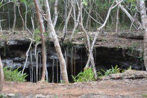 Cave in Jungle in Mexico
