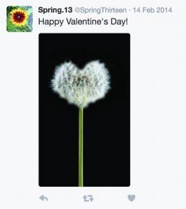 Dandelion Valentine Tweet